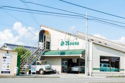 loft-store Roots